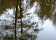 1.`Spejle