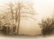 2. Billeder fra haven: `Forårsmorgendis`af Egon Hørslev Rasmussen