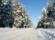 Januar: 'Vinter' af Ejgil Basselbjerg