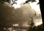 November: 'Cyklist' af Mette Müller