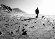 April: 'Mand og hund' af Mette Müller