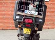 Maj: 'Egon' af Poul H. Sørensen