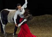 Januar: `Flamenco med Erica`af Tommy Bay