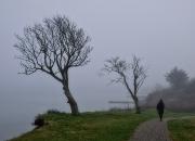 Ind i tågen