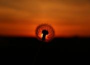 Solen går ned